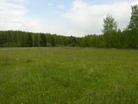 Челябинцы стали проявлять больший интерес к аукциону по продаже земли под индивидуальное жилищное строительство, сообщили в Земельном комитете города.