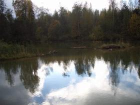 Сегодня депутаты утвердили проект постановления «Об утверждении границ памятника природы озера Пахомово и его охранной зоны»