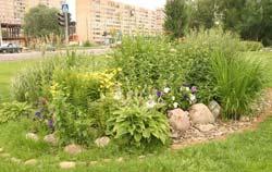 Сегодня городская комиссия подвела итоги конкурса по благоустройству и озеленению территорий образовательных учреждений «Цветущий город»