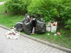 Городские власти Магнитогорска год назад вышли к народным избранникам с инициативой создания единых правил благоустройства